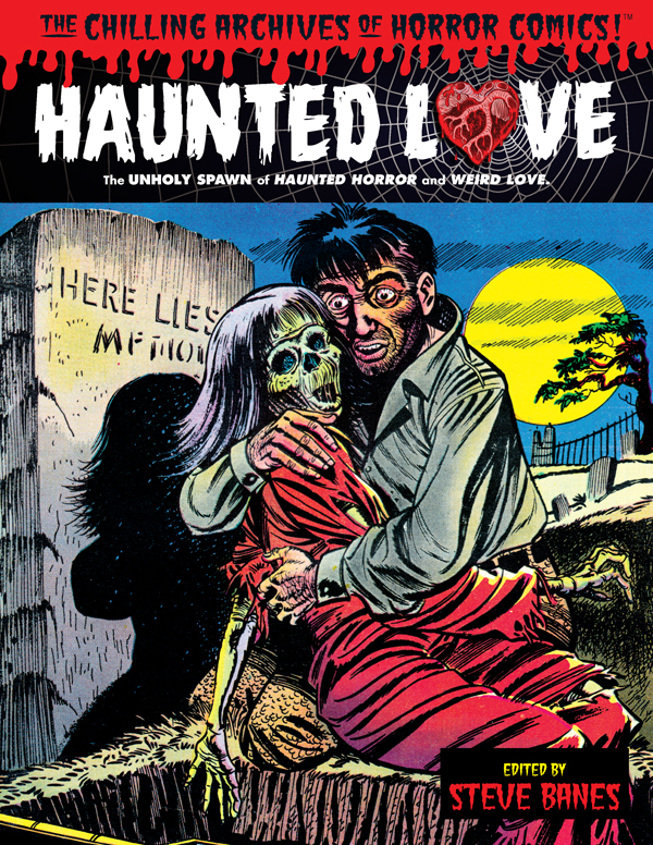 Cover of HAUNTED LOVE (Hardback) by Steve Banes
