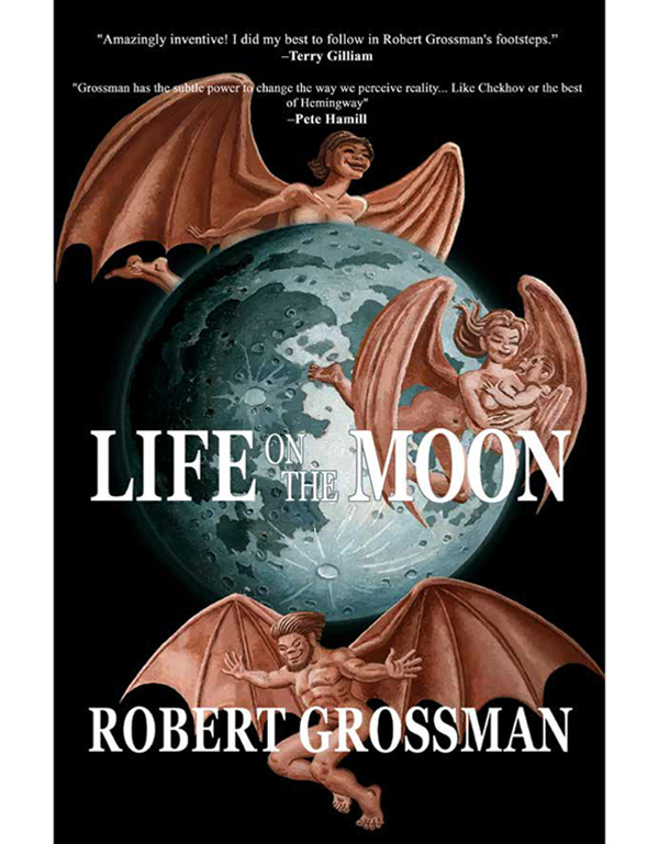 Cover of LIFE ON THE MOON by Robert Grossman