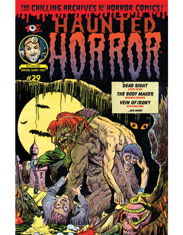 Cover of HAUNTED HORROR #29 comic book